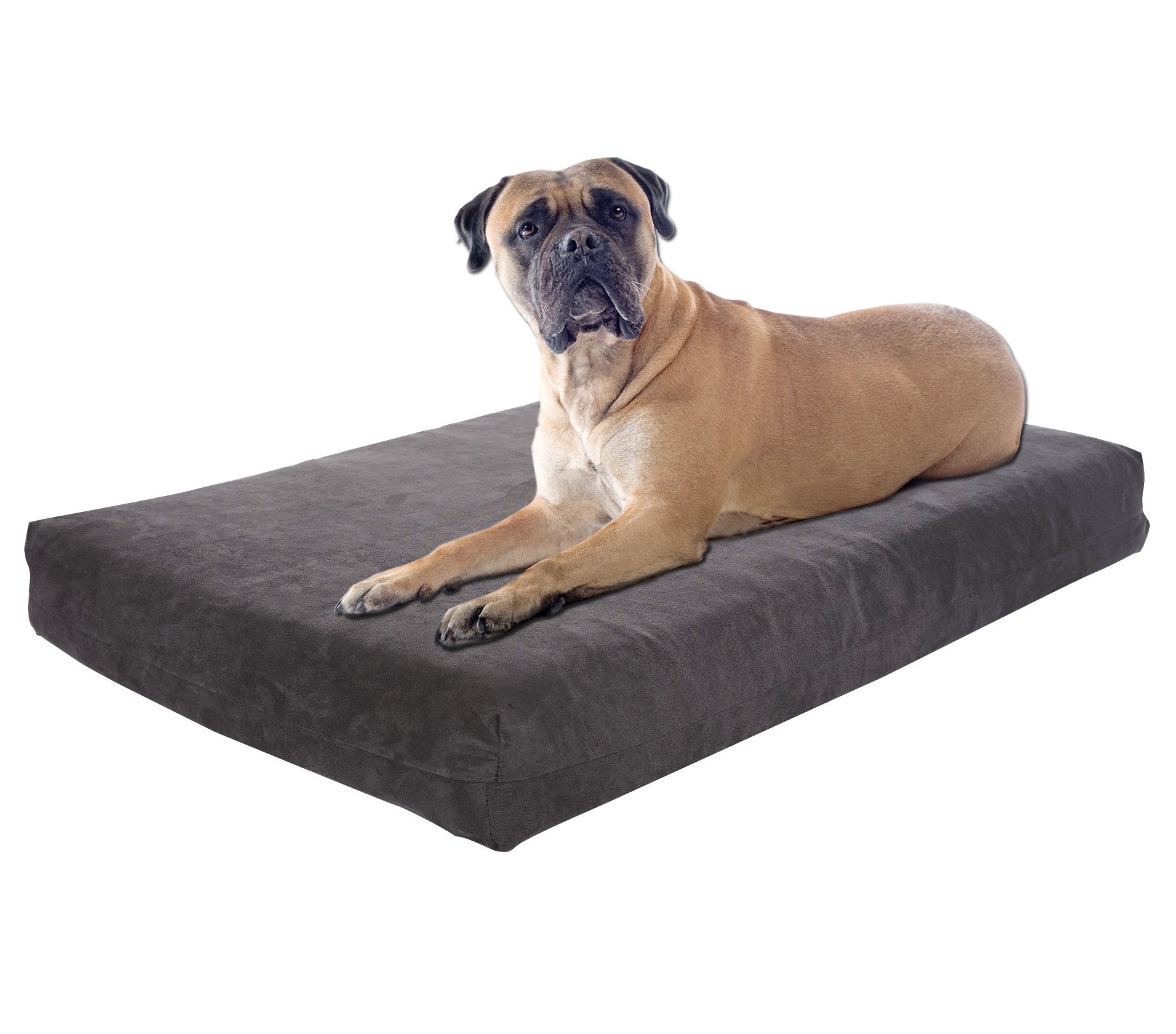 Pet Support Systems Orthopedic GEL Memory Foam Dog Bed, XX-Large (55-Inch x 37-Inch x 4.5-Inch), Grey Charcoal
