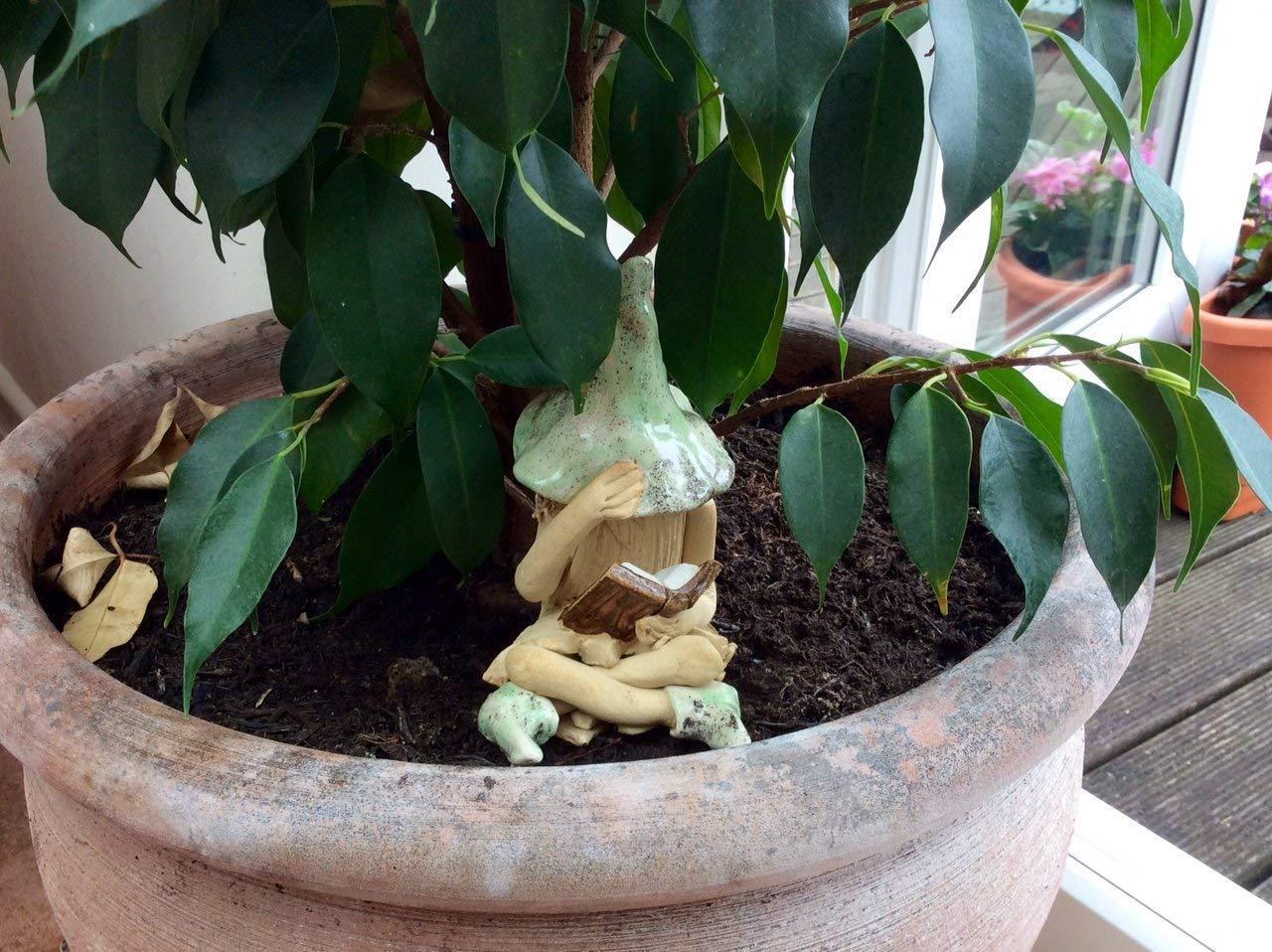 Shy fairy reading her book. hand made fairy garden pottery fairy
