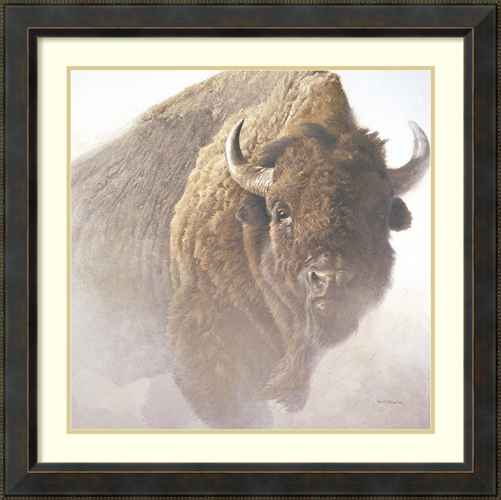Framed Art Print 'Chief (detail)' by Robert Bateman