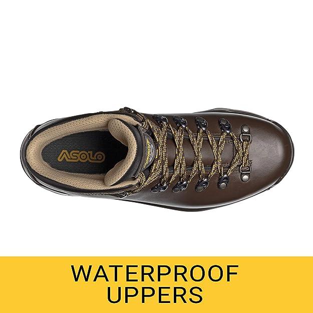 124567f503a Asolo TPS 520 GV Evo Hiking Boot