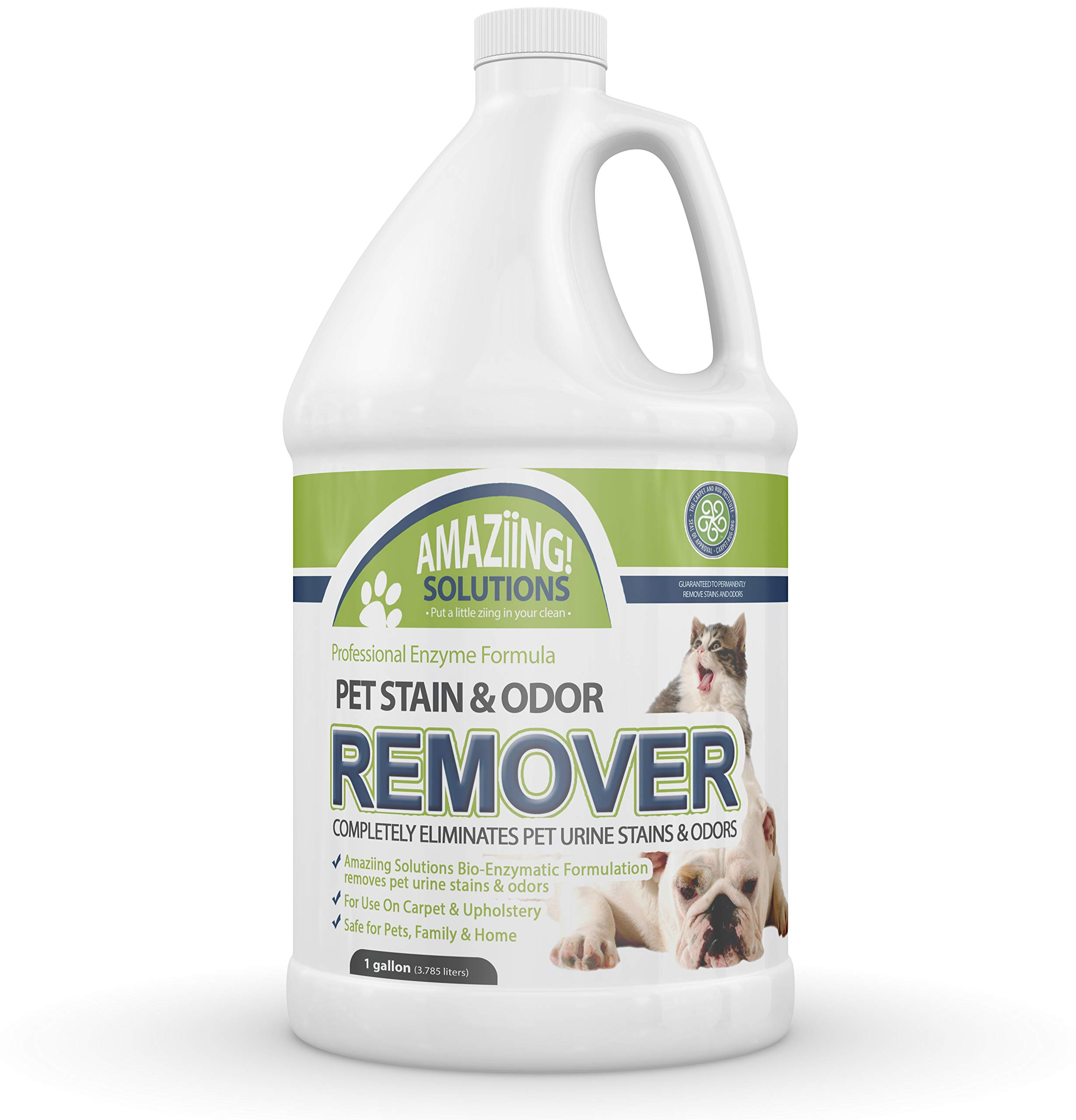 Amaziing Solutions Pet Odor Eliminator and Stain Remover Carpet Cleaner for Dog Urine and Cat Pee, Professional Strength Enzymatic Solution, Natural Enzymes for Carpet and Hardwood Floors (Gallon) by Amaziing Solutions