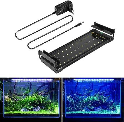 """Résultat de recherche d'images pour """"eclairage aquarium"""""""