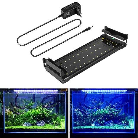Lámpara de Acuario Iluminacion led para peces y estanques Luz Azul Blanca 6W con Soporte Ajustable