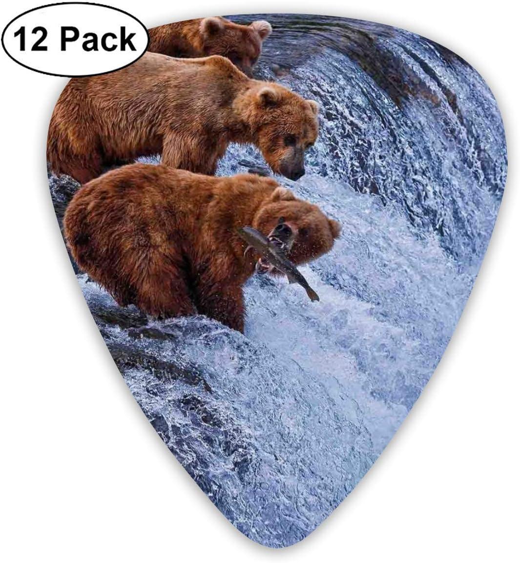 Púas de guitarra Osos grizzly Pesca en cascadas del río Cascade Alaska Nature Camp View, para bajo Guitarras eléctricas acústicas-12 Pack