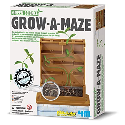 4M Grow-A-Maze Green Science Kit: Toys & Games
