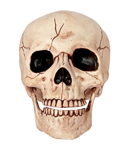 amazon com crazy bonez skeleton skull toys games