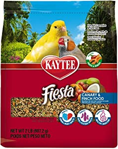 Kaytee Fiesta Canary and Finch Food, 2 Pound Bag