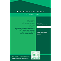 Rapport d'information sur l'application du dispositif relatif à la mise en oeuvre des obligations des entreprises pour l'égalité professionnelle
