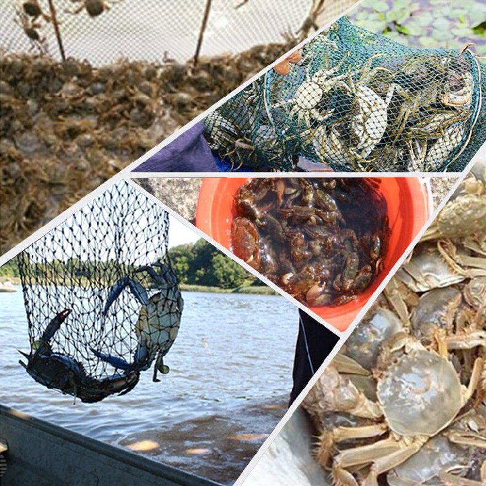 Red de pesca plegable y reutilizable de Winomo para peces y camarones