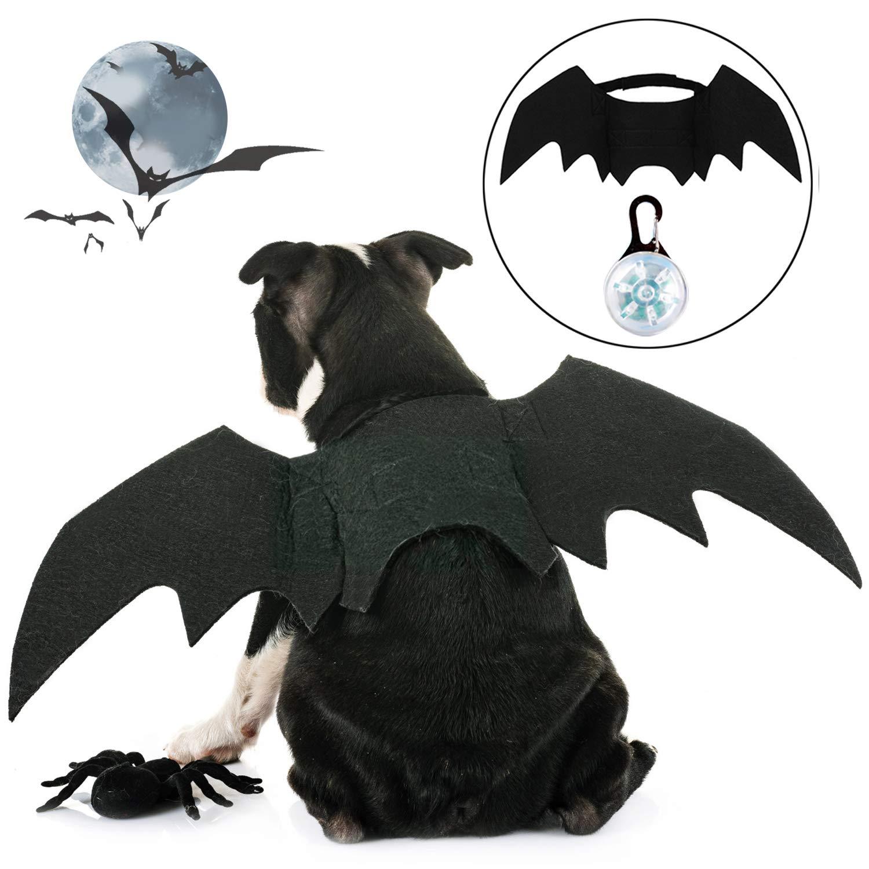 murci/élago de Gato con Campana de Calabaza Alas de murci/élago para Gato Disfraces de Perro Ropa de Mascota de Halloween Gato Mascota peque/ña para Cachorro Disfraz de Gato de Halloween