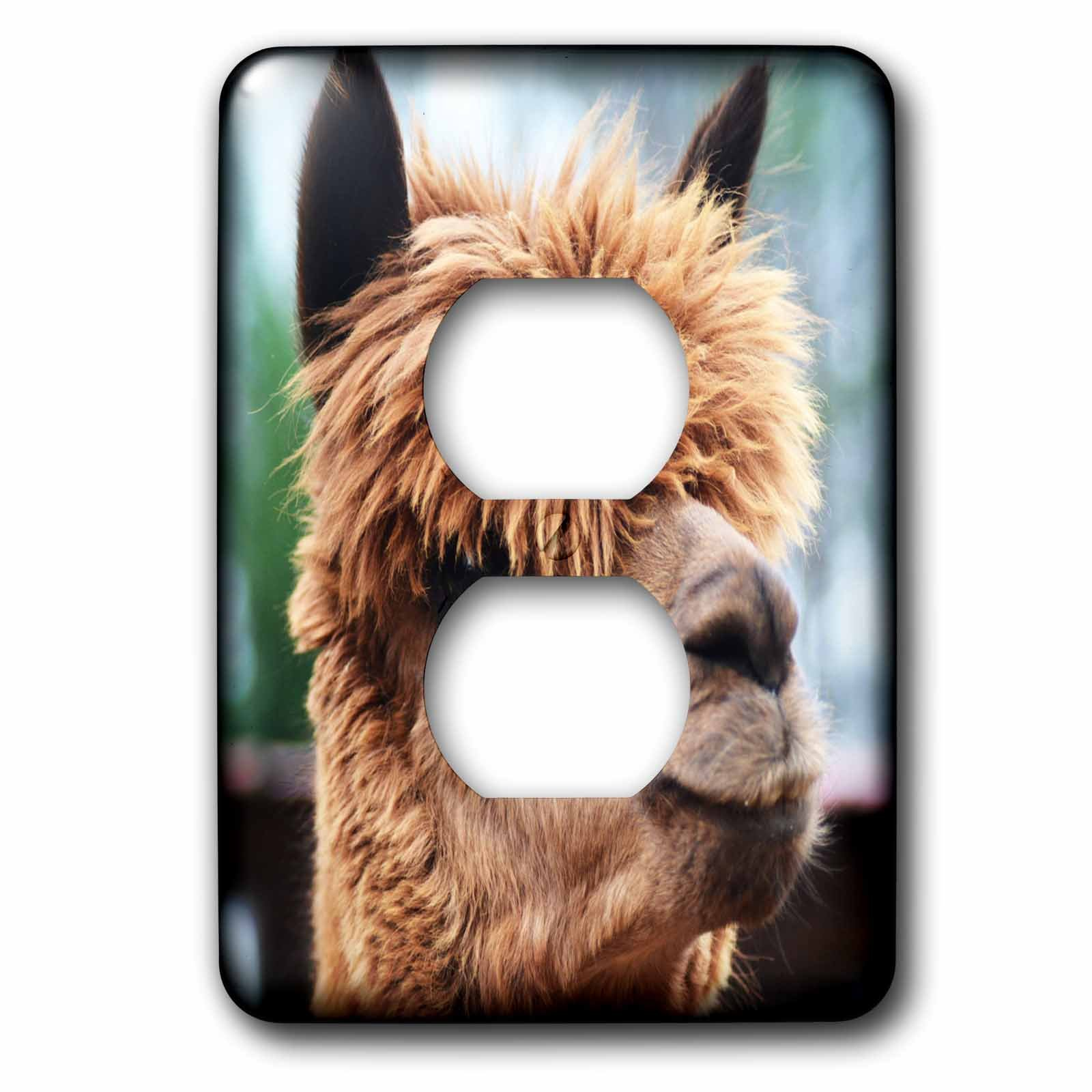 3dRose WhiteOaks Photography and Artwork - Lamas - Lamas Profile is a photo of a lama showing off its profile - Light Switch Covers - 2 plug outlet cover (lsp_265336_6)