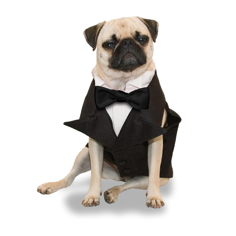 Amazon.com : Scooter\'s Friends Tailored Dog Tuxedo, Size Medium ...
