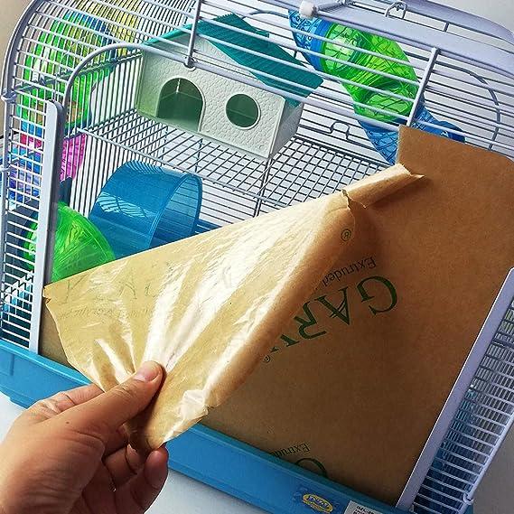 Dizelin Jaula Hámster 1 Unidad 1000 g: Amazon.es: Productos para ...
