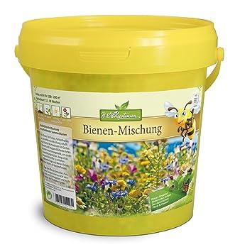 Bienen und Hummelmagnet /& Sch/öngesicht Blumensamen von Quedlinburger Saatgut