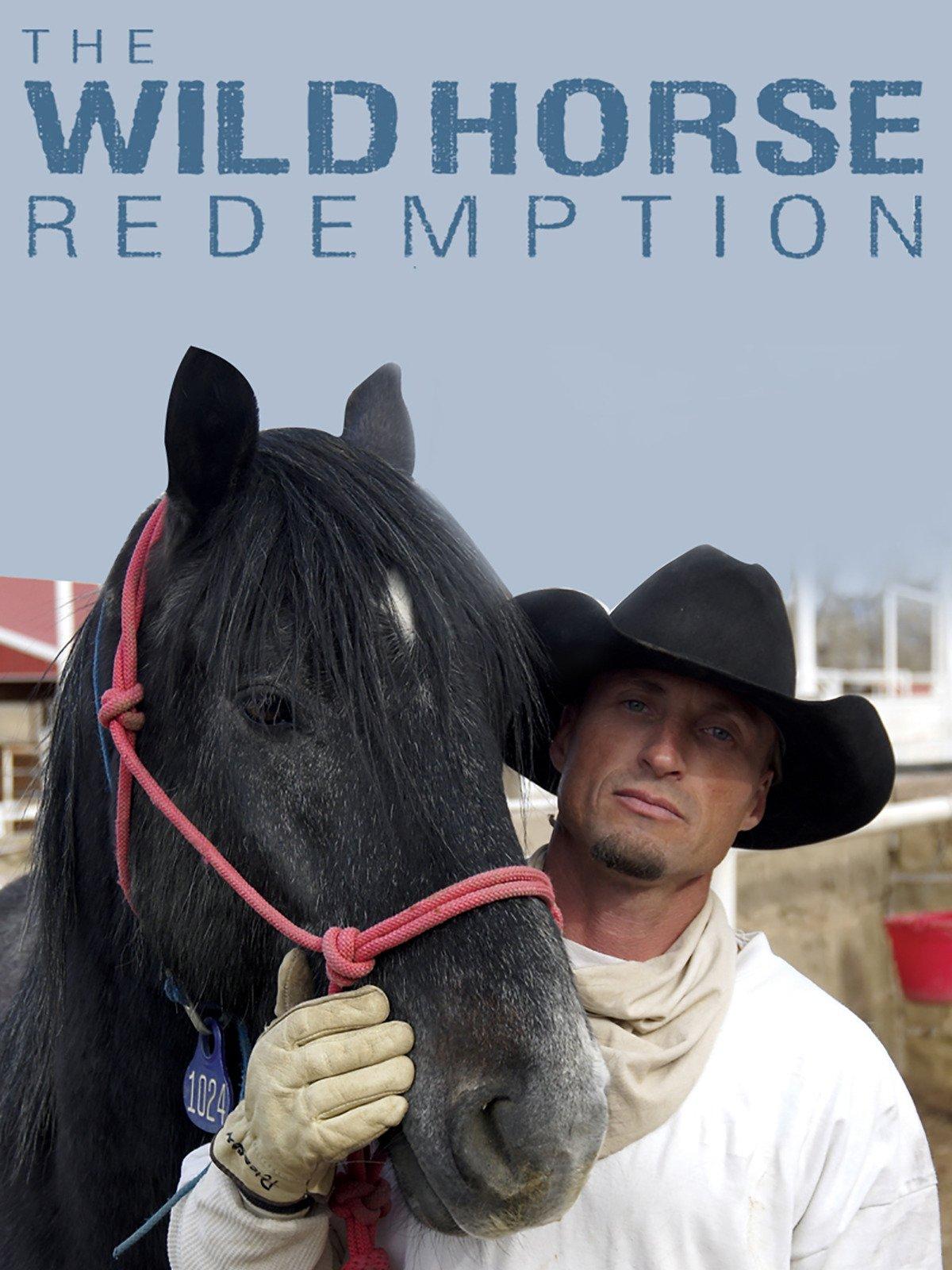 Les chevaux de la seconde chance (The Wild Horse Redemption) - French - MP4 - HDTV