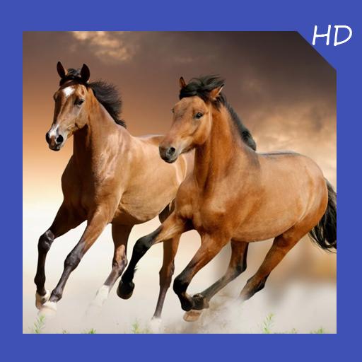 Horse Lock - 2