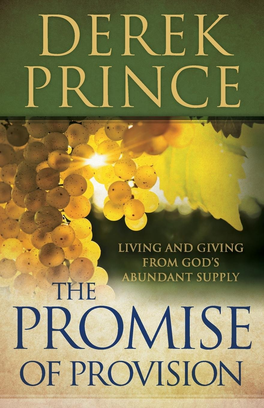 Read Online The Promise of Provision: Living and Giving from God's Abundant Supply ebook