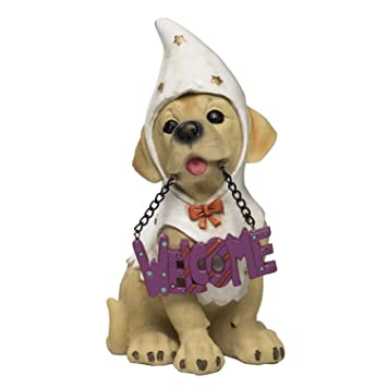 Amazon.com: One Holiday Way Halloween Perro cachorro con ...