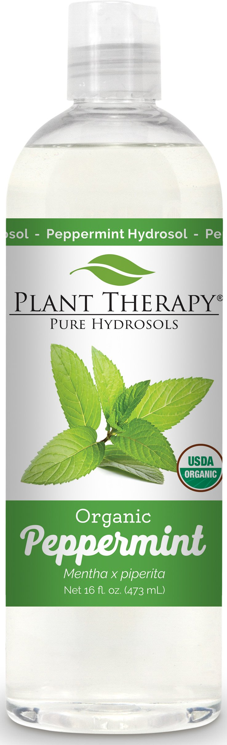 Plant Therapy Peppermint Organic Hydrosol Flower Water, By-Product of Essential Oils 16 oz by Plant Therapy