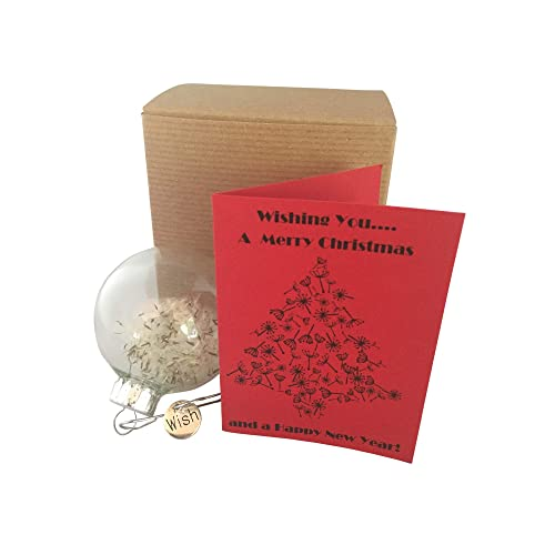 dandelion seed wishing you a merry christmas ornament with card and gift box