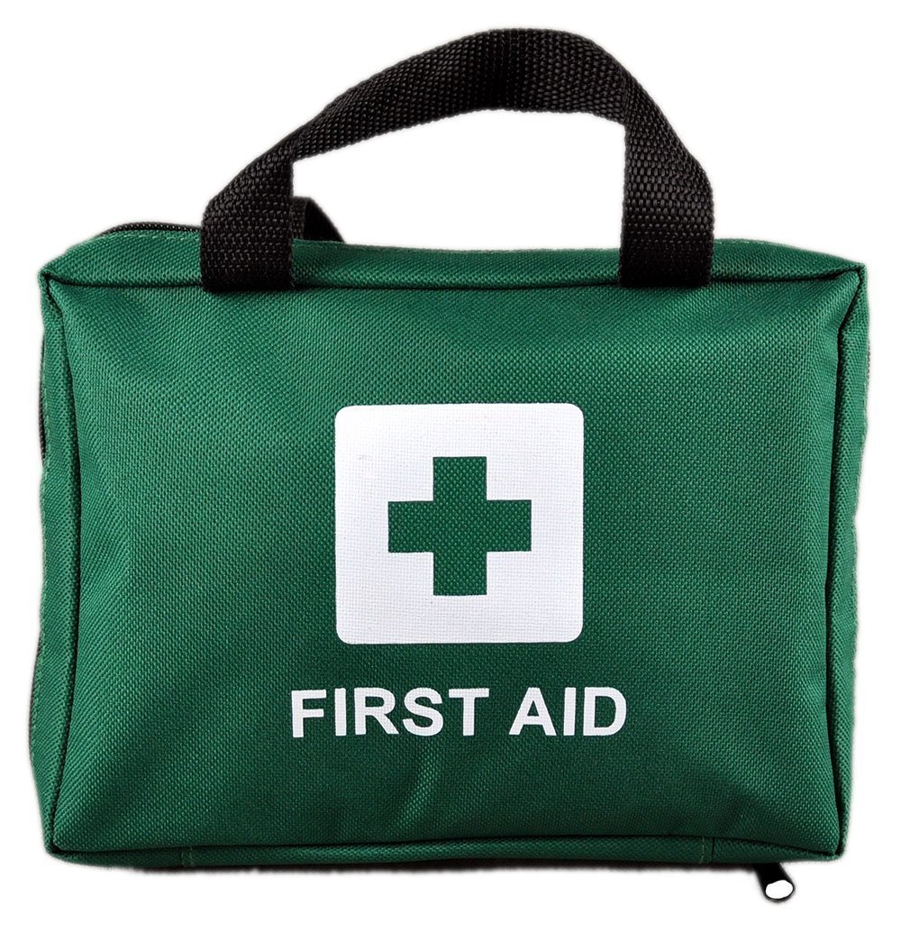 100 Piece Premium First Aid Kit Bag - Includes Eyewash, 2 x Cold (Ice) Packs and Emergency Blanket for Home, Office, Car, Caravan, Workplace, Travel. Free Survival E-Book (Green) REissen