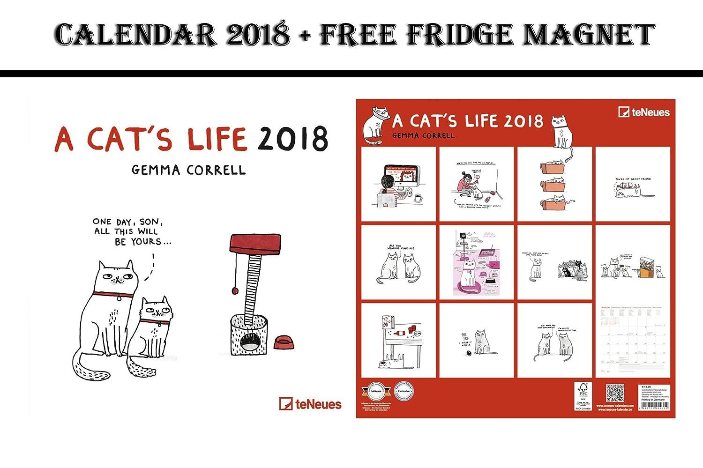 La vida de un gato cuadrícula calendario 2018 + Celebrity imán para nevera: Amazon.es: Oficina y papelería