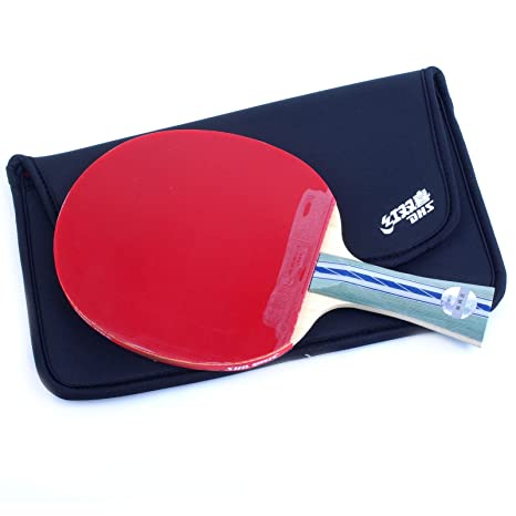 DHS Ping Pong Paddle A5002 Raqueta Table Tenis Racket Shakehand With Landson Protector