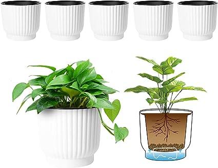 T4u Macetas Para Plantas De Interior 6 Unidades De Plástico Para Todas Las Plantas Como Flores Y Violetas Africanas De Casa Blanco Jardín Y Exteriores