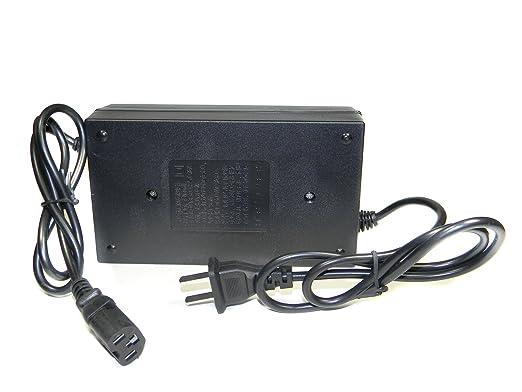 Amazon.com: Cargador de batería SCOOTER eléctrico Panterra ...