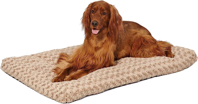 Amazon.com : Plush Dog Bed | Ombré
