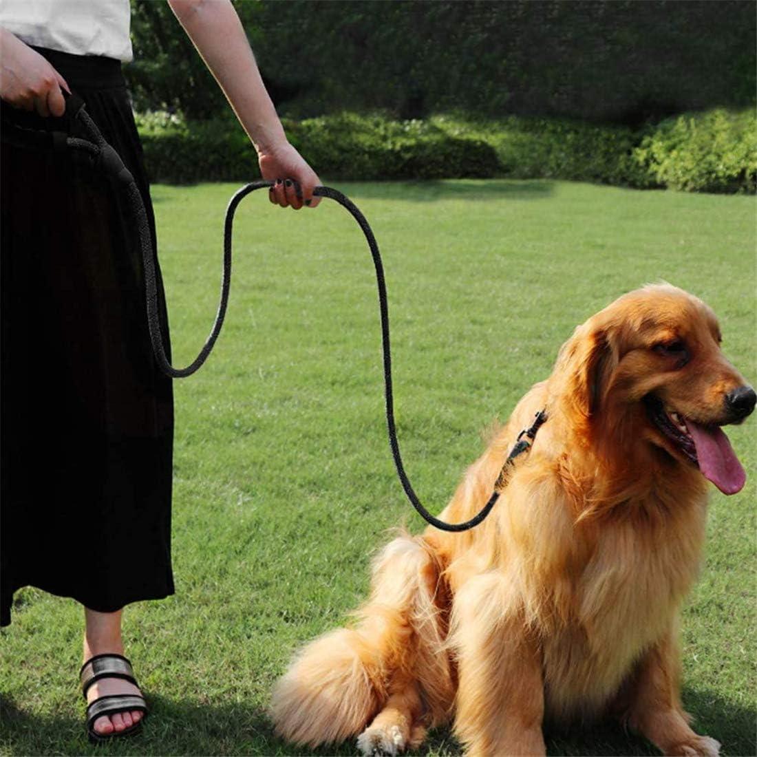 Alittle Collare guinzaglio e Imbracatura Set,Regolabile Cani Animali Pet Corda Leash Rope Cane Dog Harness Collare per Cane per Piccolo Medio Grande Cane(S)