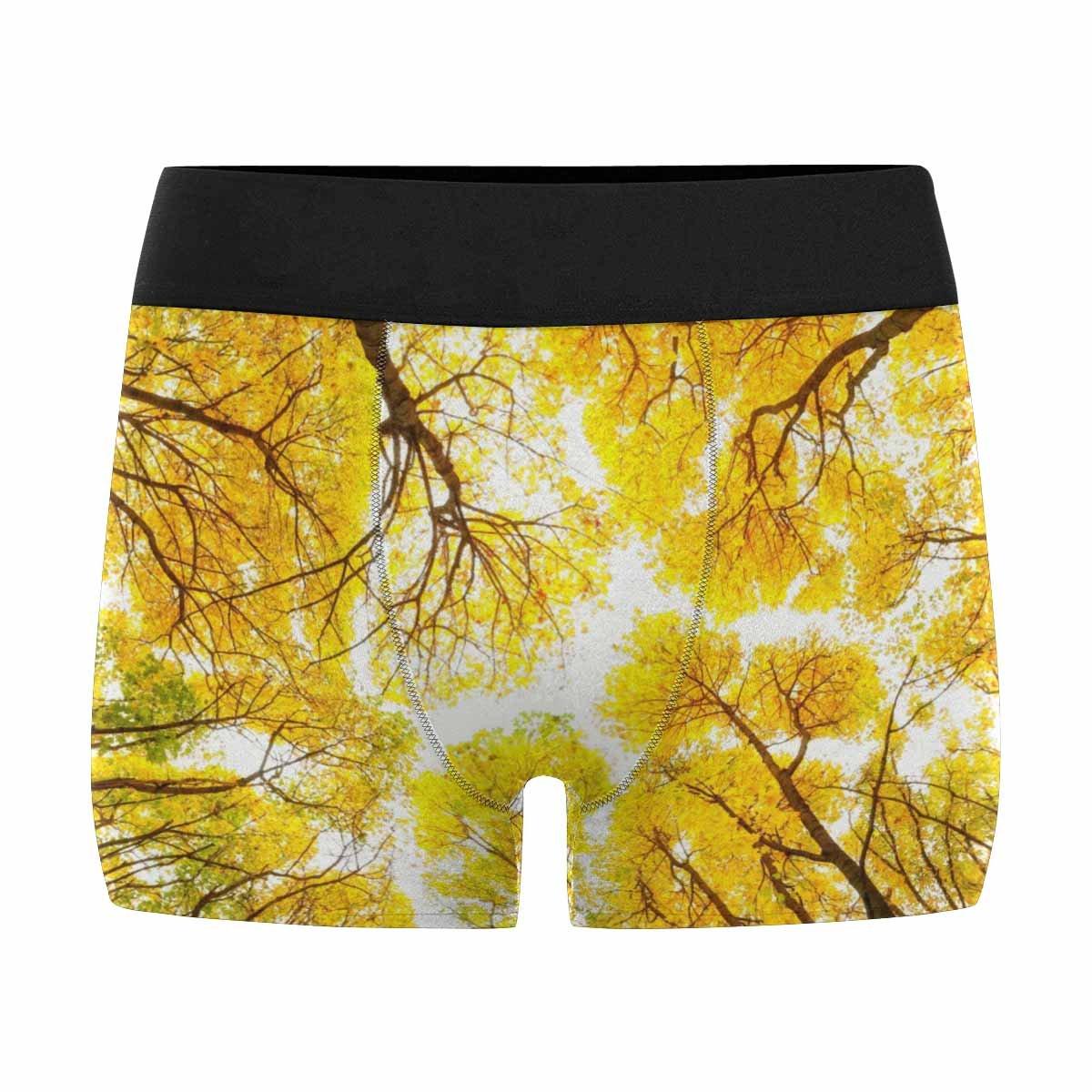 INTERESTPRINT Mens Boxer Briefs Underwear Autumn Trees Pattern XS-3XL