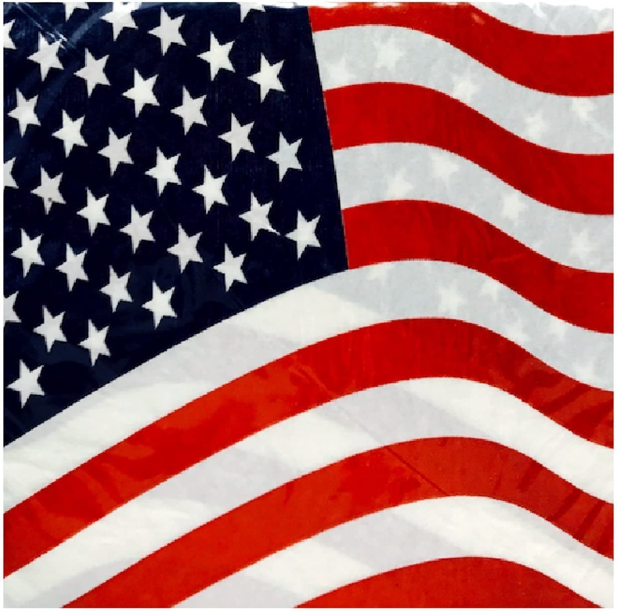 Patriotic PAPER NAPKINS 13 inch AMERICAN FLAG Red PARTY 16 PACK  Luncheon  C19