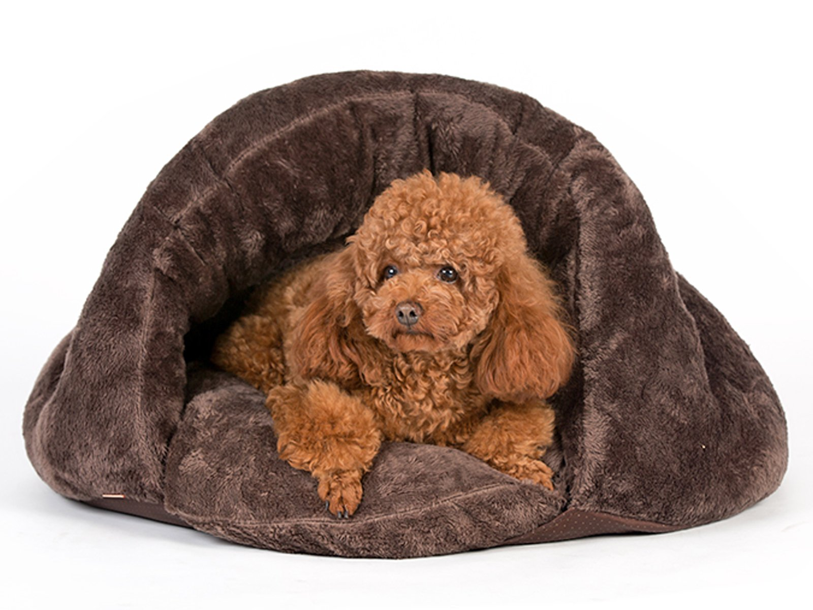 PLS Pet Cuddle Pouch Pet Bed (Medium), Bag, Covered Hooded Pet Bed Igloo-Shaped Lounger, Cosy, For Burrower Cats and Puppies, Brown