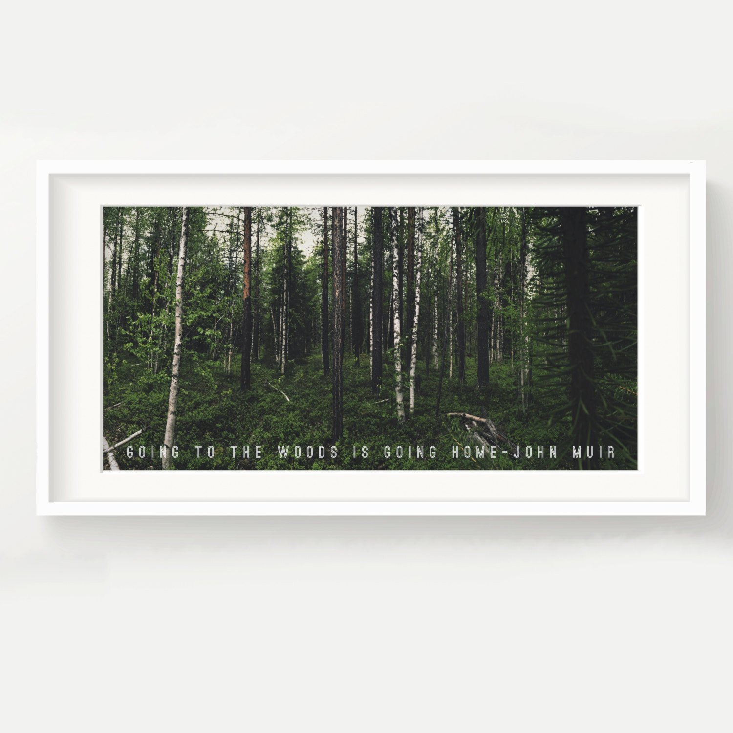 Amazon Urban Decal John Muir Forest Print Going To The Woods