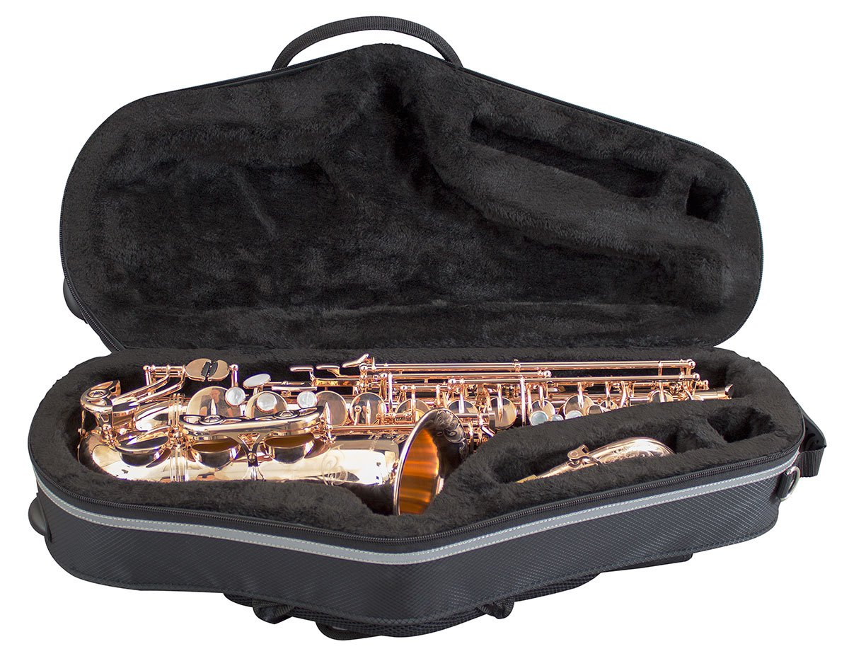Champion CHCSAXA1-Custodia per sassofono contralto