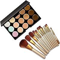 Preyansh 15 Color Cream Concealer Palette with 12 Make up Brush Set