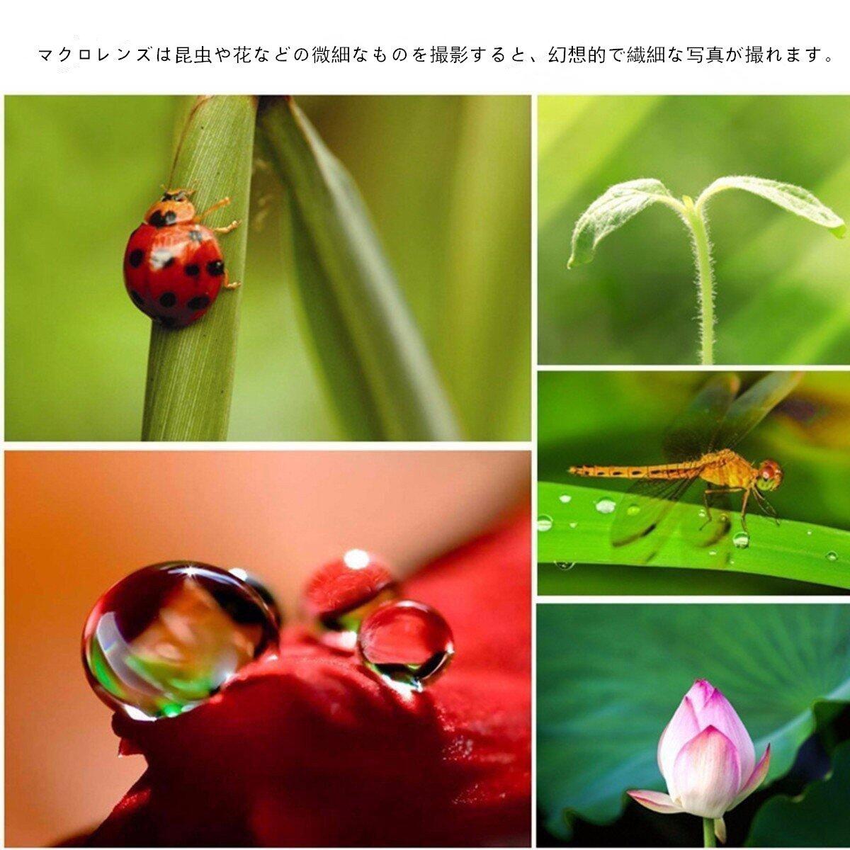 https://images-na.ssl-images-amazon.com/images/I/71c3ZASpNsL._SL1200_.jpg