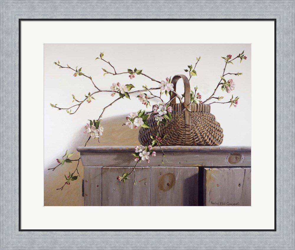 Amazon.com: Apple Blossoms by Pauline Eble Campanelli Framed Art ...