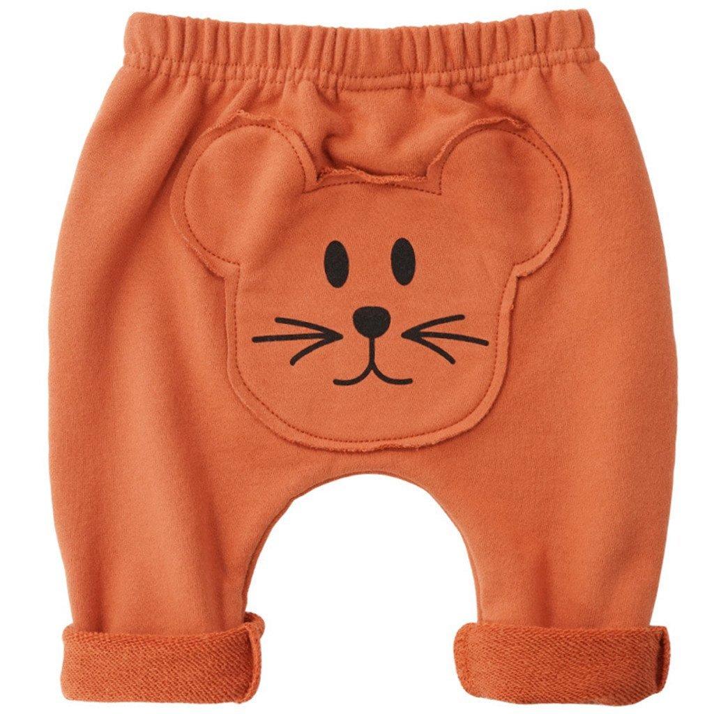 Baby Harem Long Pants Hiphop Toddler Sport Jogger Trousers Cotton Leggings 3-6 Months ShenzhenWindyTradingCo. Ltd