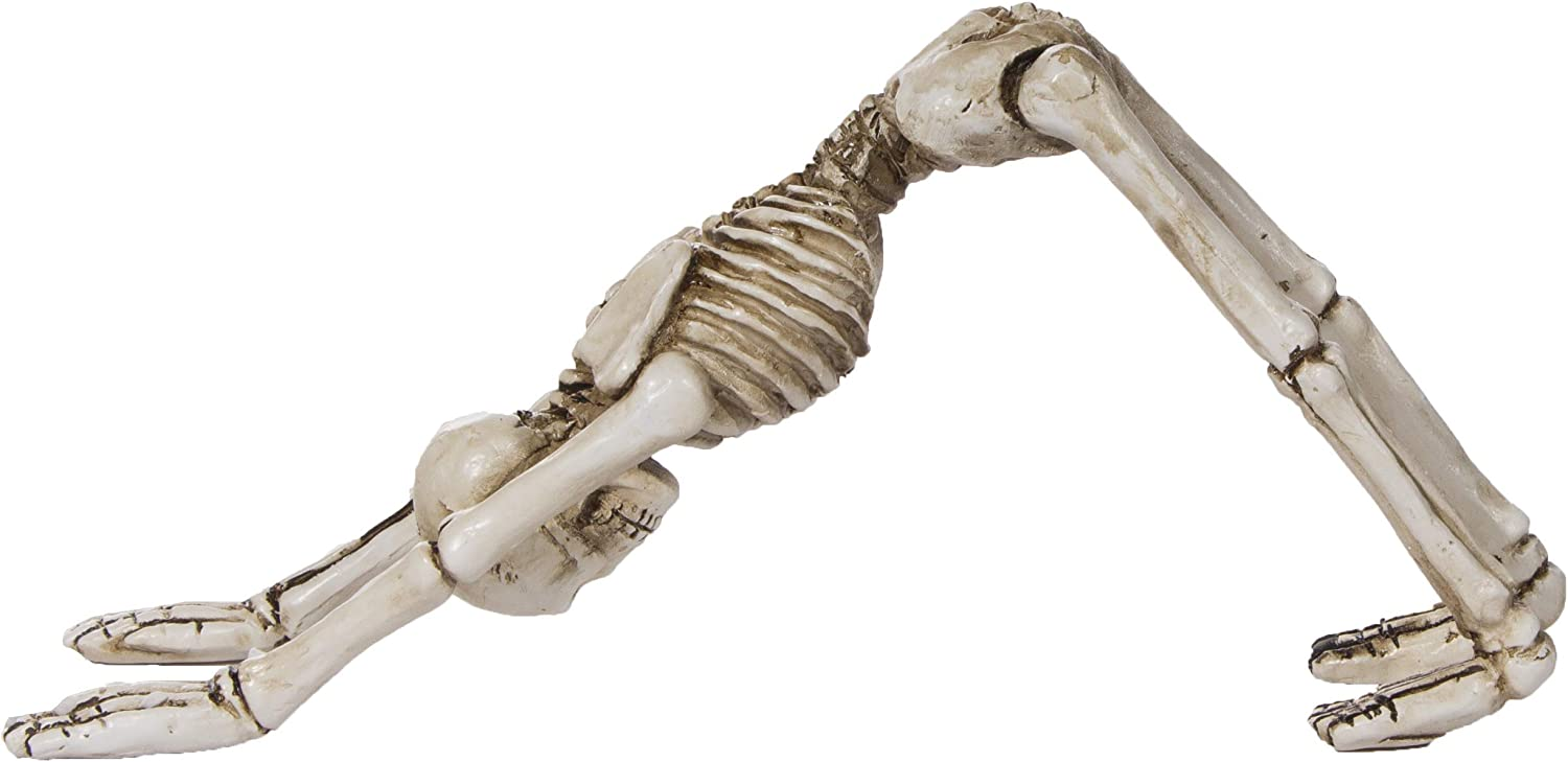 Halloween Decorations - Polyresin Yoga Skeletons in Choice of Position (Downward Dog)