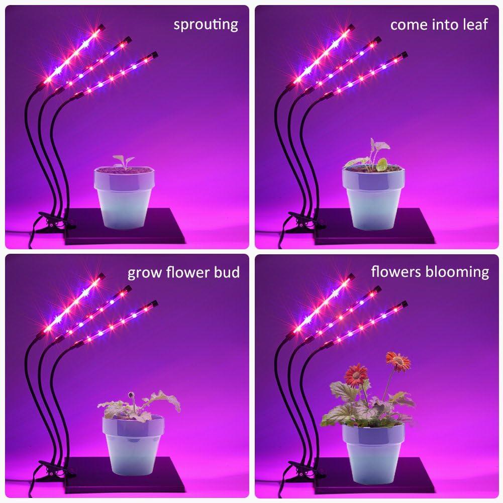 con timer per piantine 234 LED a collo doca regolabile a 360/° Luce a LED per la coltivazione delle piante spettro completo per piante da interno 5 livelli dimmerabili e 3 teste