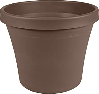 "product image for Bloem Terra Plastic Pot Planter 4"", Chocolate Brown, TR0445"