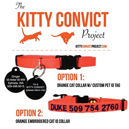 82152d0f013c Pet Supplies : Kitty Convict Personalized Cat ID Collars : Amazon.com