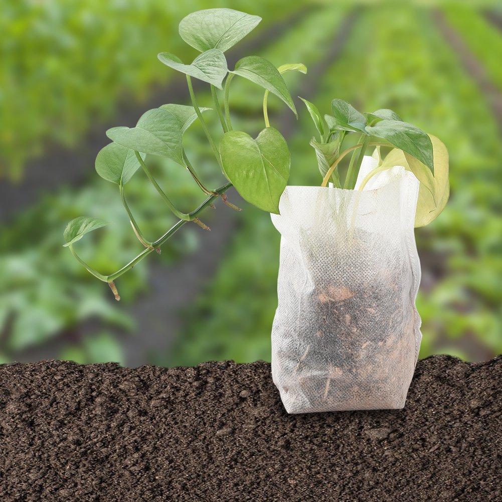 Cizen Tissu Pots de Semis Sacs de Culture Accueil Fourniture de Jardin 3 Tailles 300 Pi/èces Biod/égradable Non Tiss/é Sacs de P/épini/ère