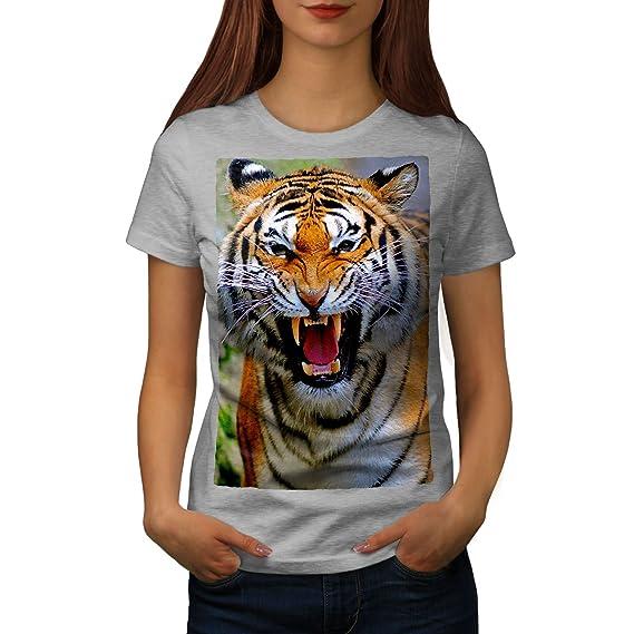 Tiger fotos kostenlos