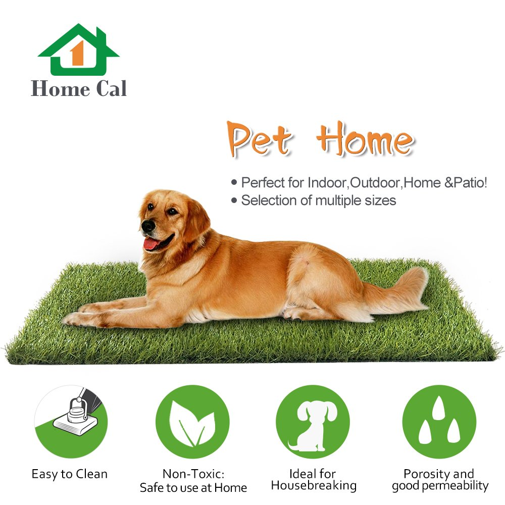 Home Cal Artificial Grass Rug Series Landscape Outdoor Decorative Synthetic Turf Pet Dog Area with Neat Edge 3cm 12'x10' Autumn Grass by Home Cal