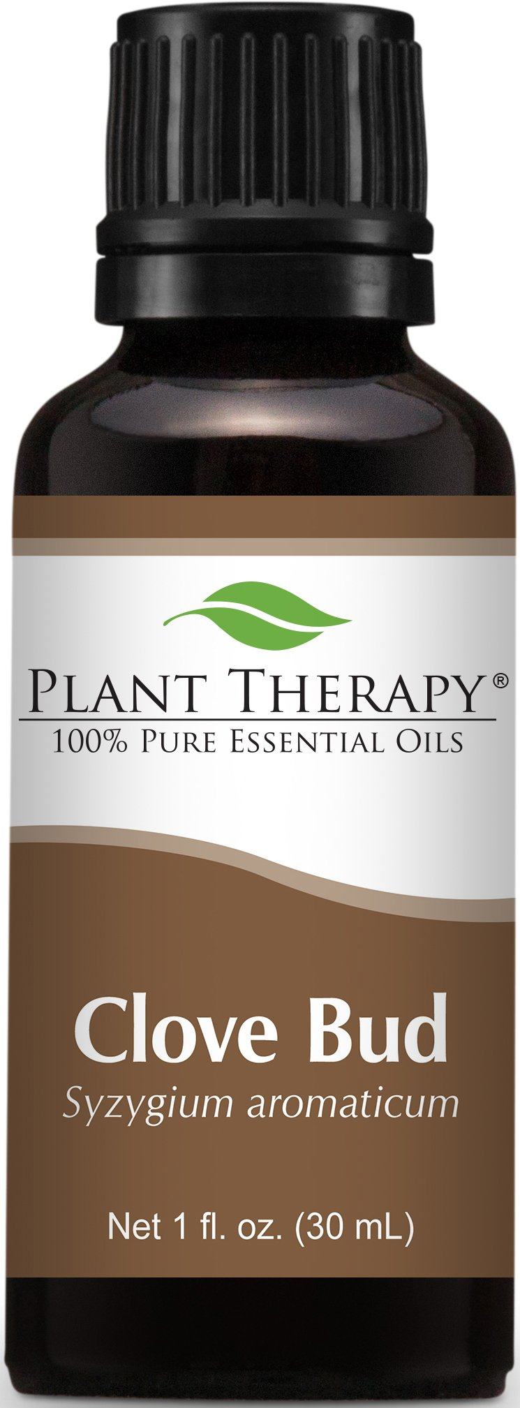Plant Therapy Clove Bud Essential Oil. 100% Pure, Undiluted, Therapeutic Grade. 30 ml (1 oz).