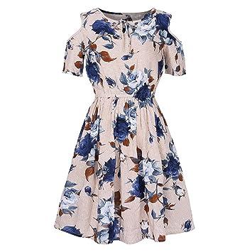 06dbedb8453 Amazon.com  Clearance Deals Plus Size Dress