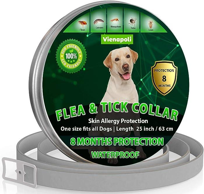 Los 7 Bravecto Flea Treatment For Dogs
